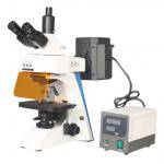 Fluorescence Microscope  43-FMS301