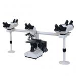 Multi-Viewing Biological Microscope  43-MBM100